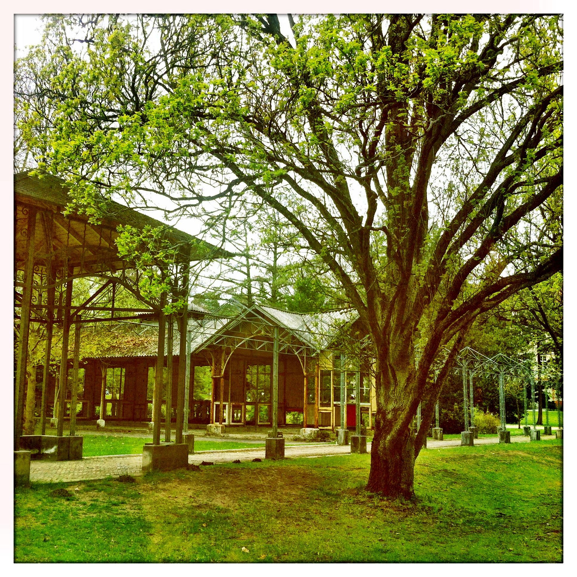 Brandenburg | Beelitz Heilstätten Gartenbereich