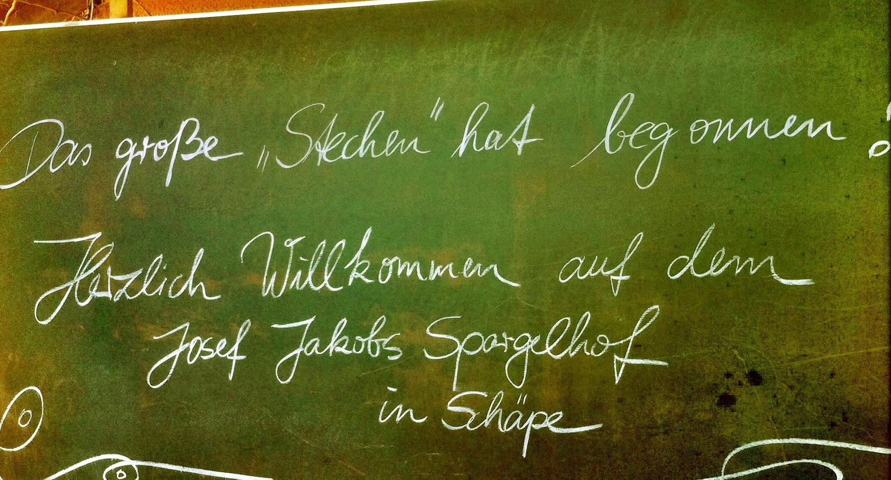 Brandenburg Beelitz | Schäpe | Das große Stechen
