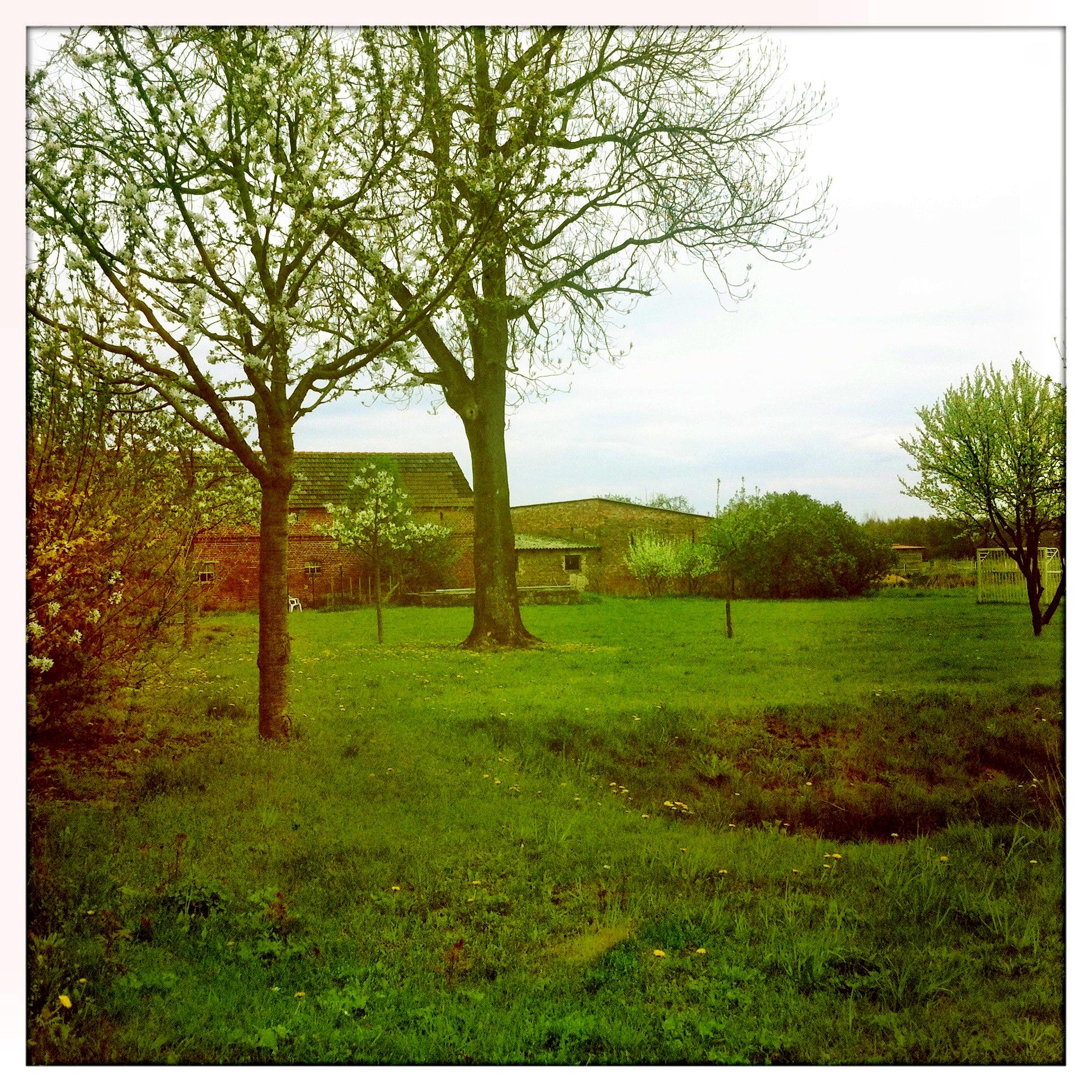 Brandenburg Beelitz | Schäpe Dorfromantik