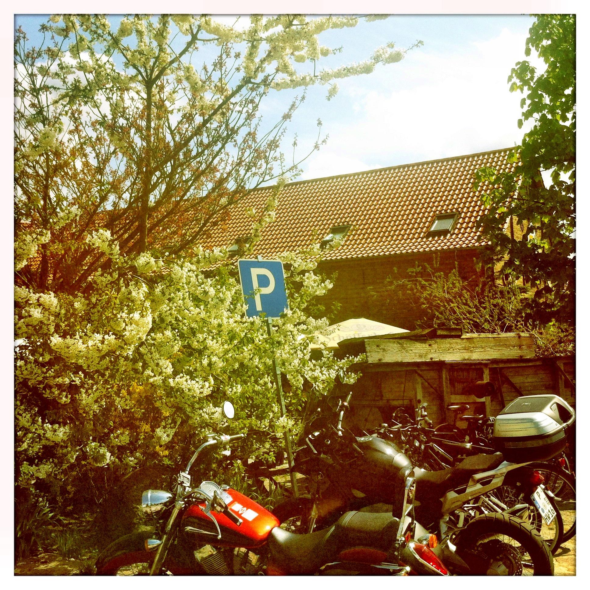 Brandenburg Beelitz | Schäpe Parken
