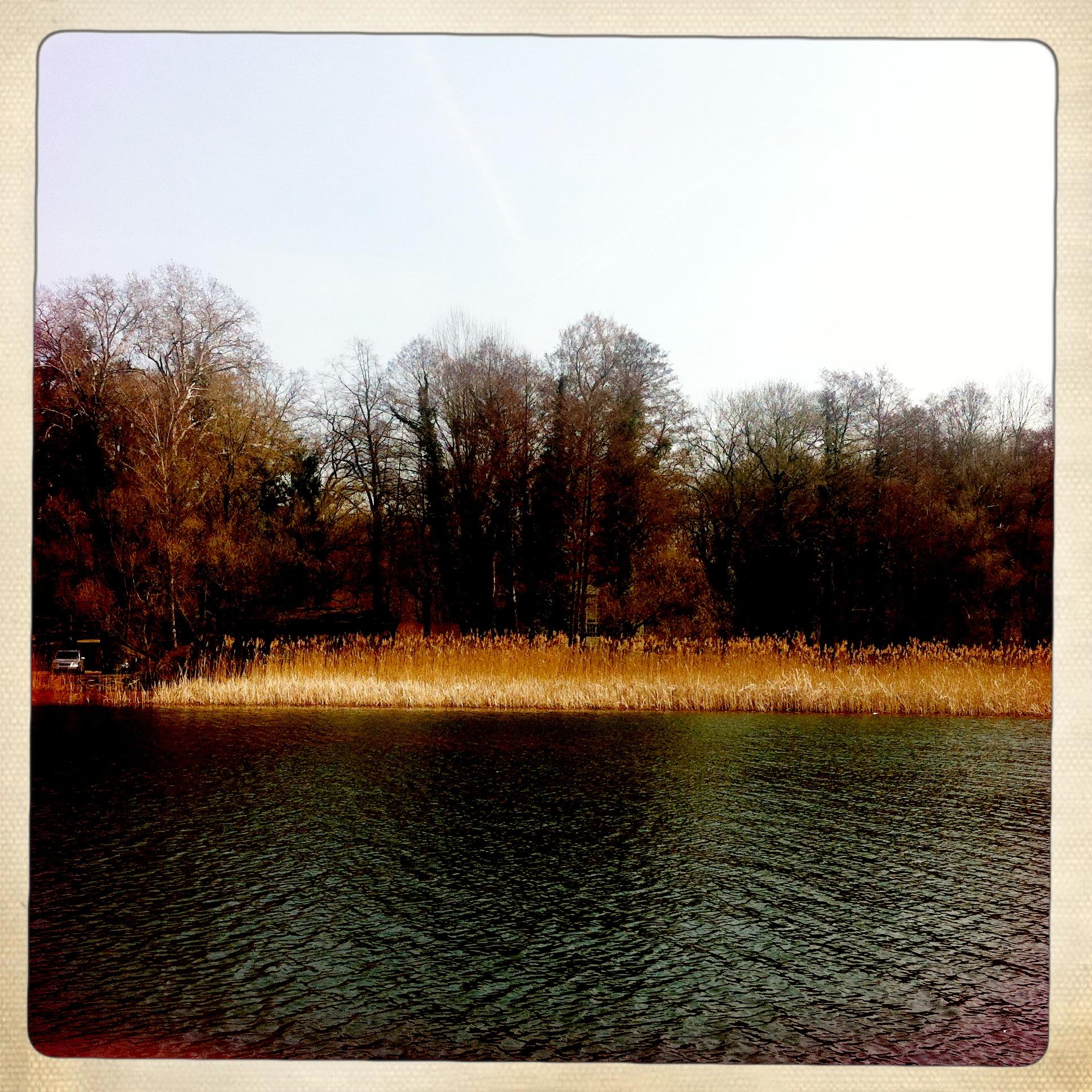 Brandenburg | Buckow | Schermützelsee | Bootsausflug | Ufer