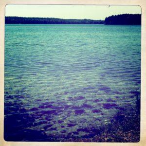 Am Ufer des grossen Stechlinsees