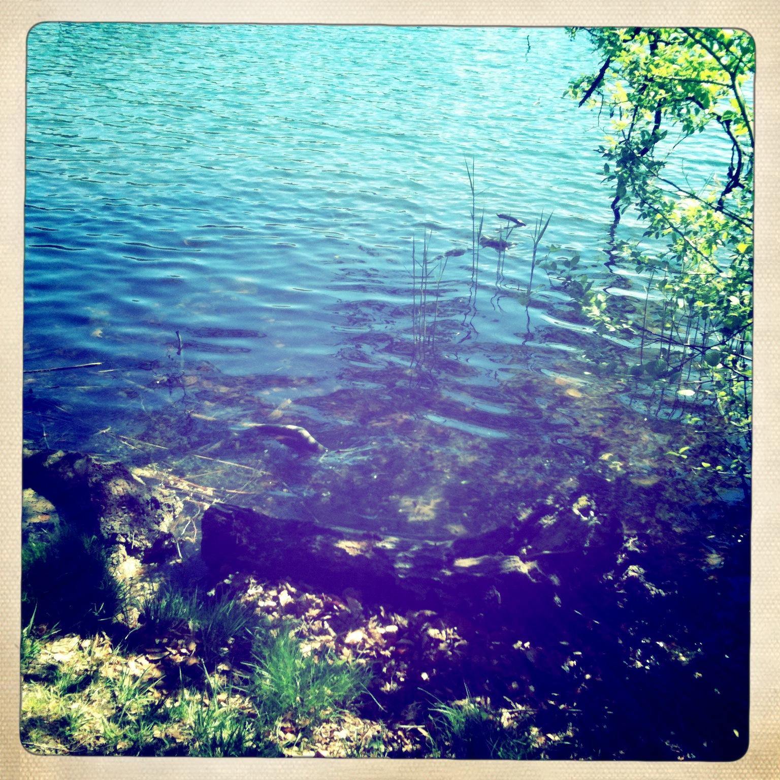 Brandenburg-Liepnitzsee-Wasser