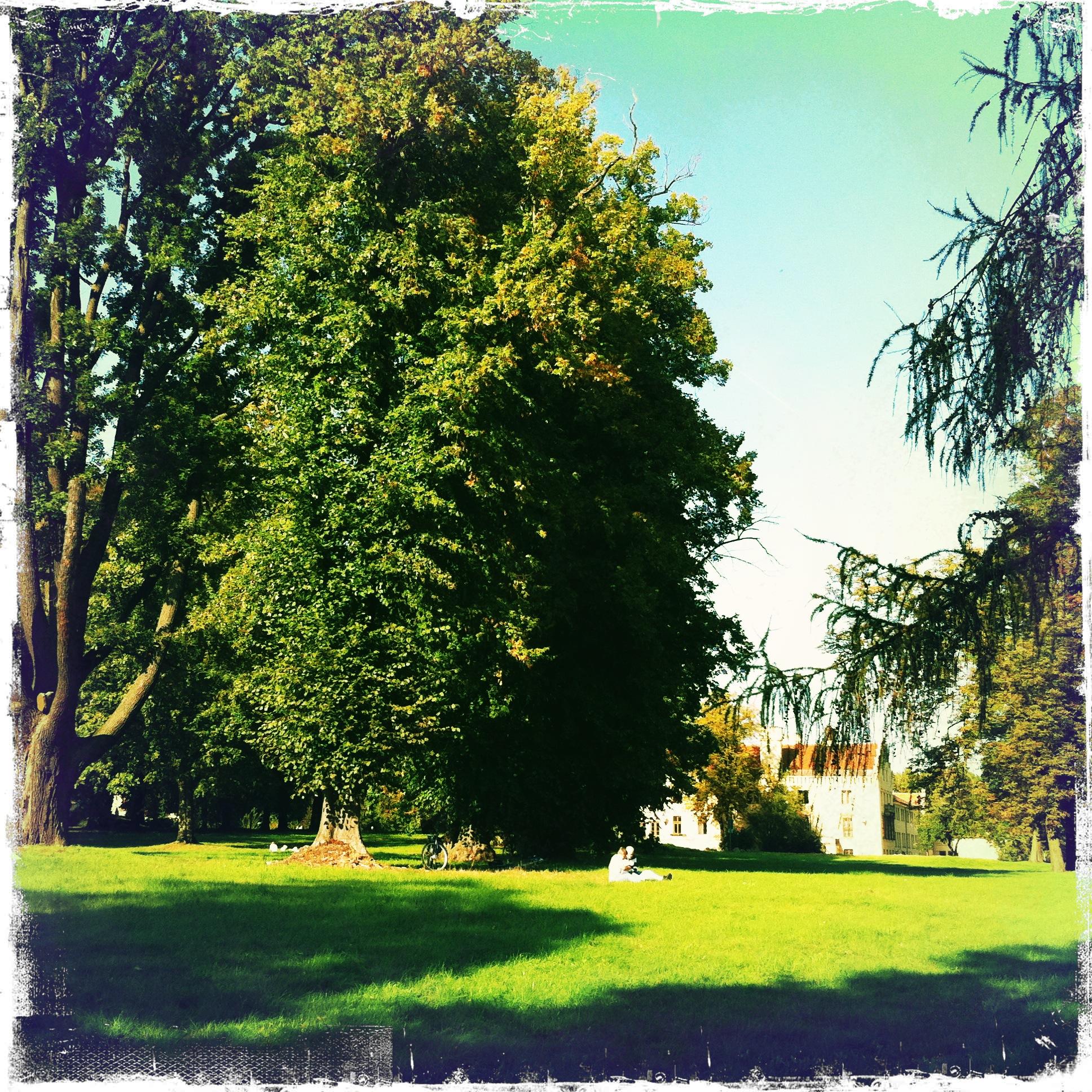 Brandenburg Werder Petzow - Schlosspark Petzow