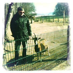 Streichelzoo im Wildpark Schorfheide