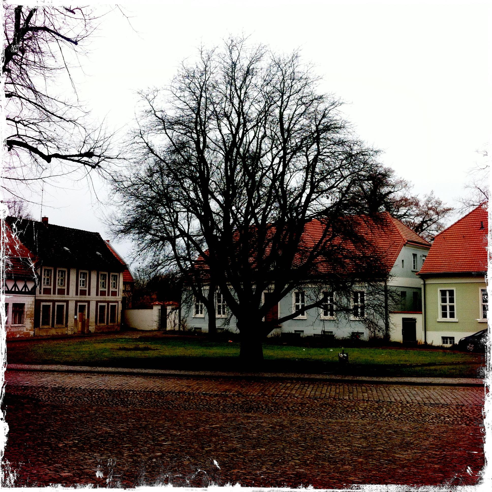 Brandenburg an der Havel l Vorplatz Dom