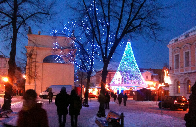 Weihnachtsmarkt in Potsdam