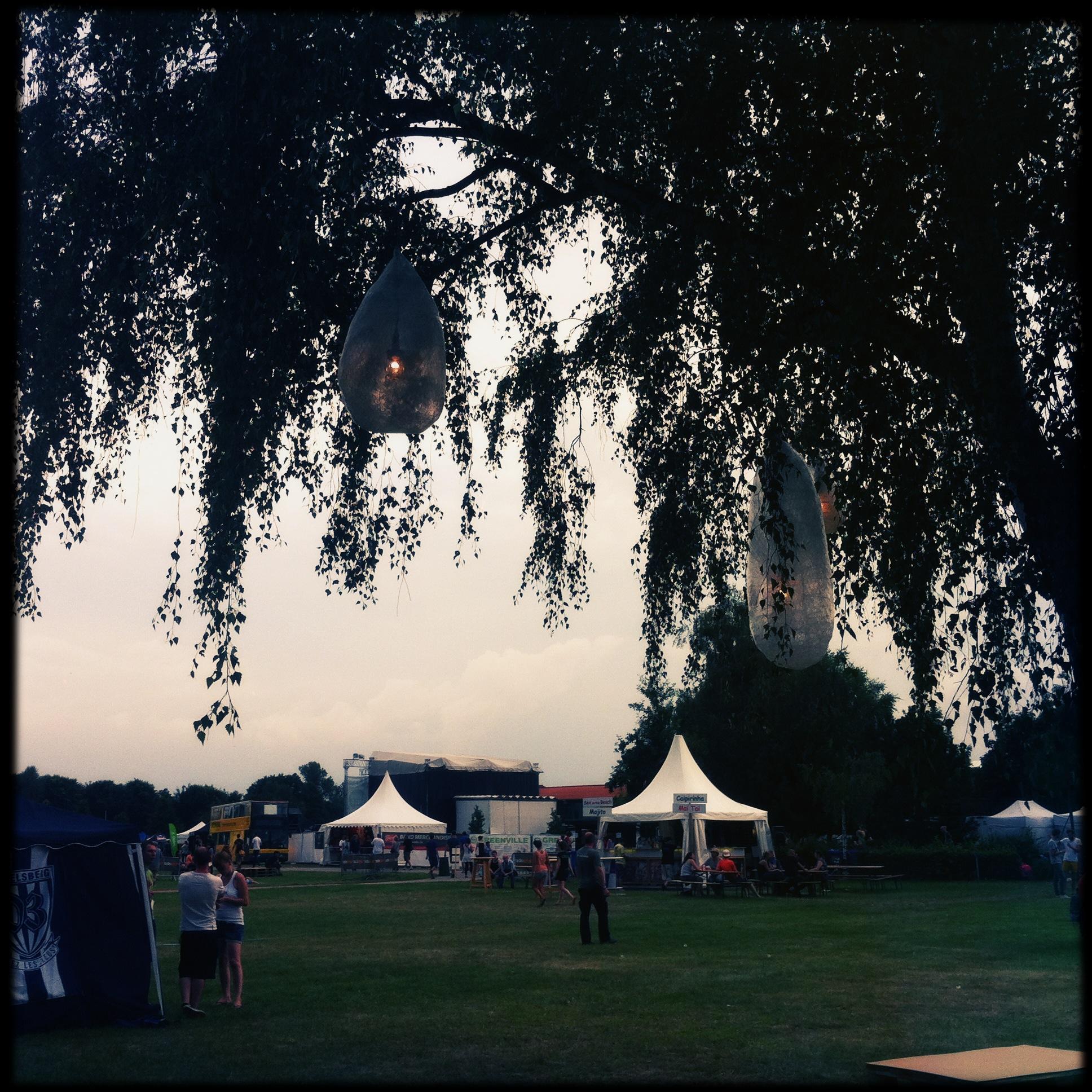 Brandenburg Paaren im Glien Greenville Festival - Baumblick